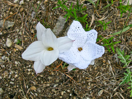 Rain Lily - Crochet Fiber Art