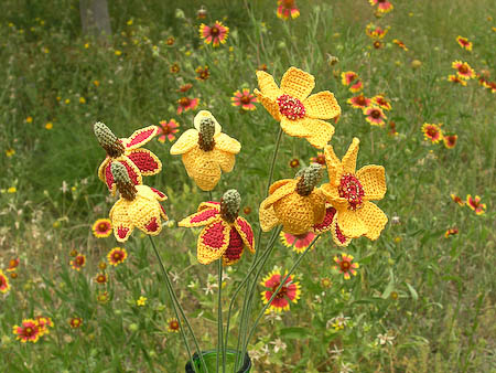 Mexican Hat Wildflower Pottery